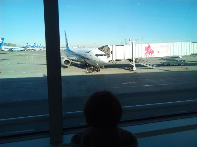 飛行機見えた