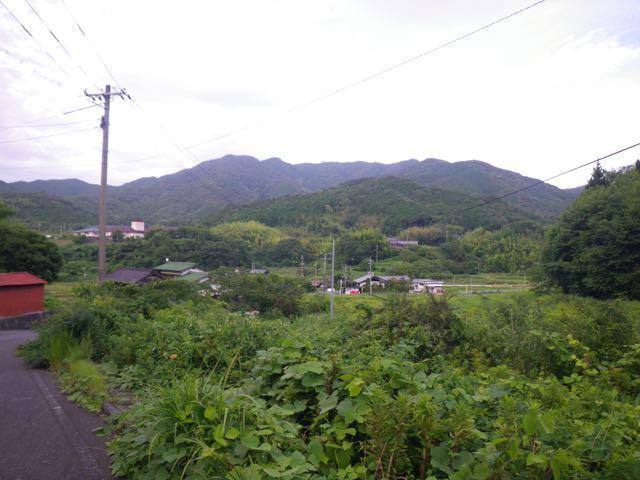 放棄地ジャングル